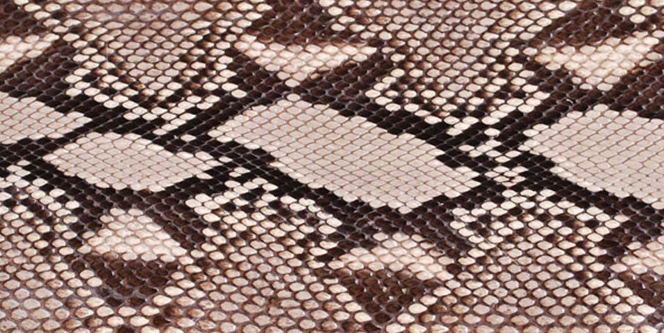 exotic-skins-python-dnmag